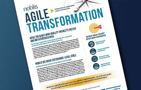 DOWNLOAD: Agile Transformation
